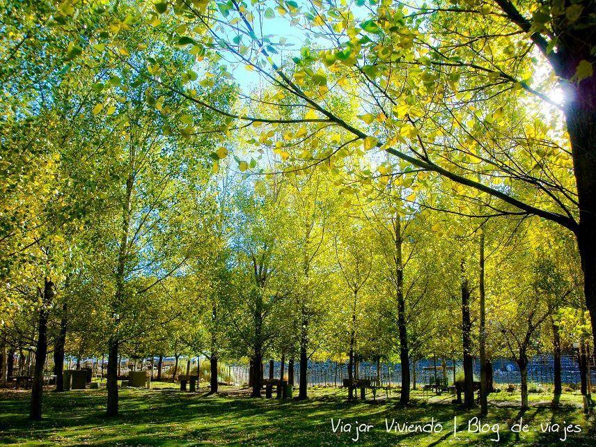 Hermoso entorno de otoño en los Castillos de Pincheira