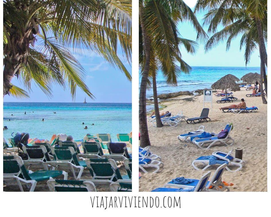 La playa del Hotel viva wyndham dominicus beach