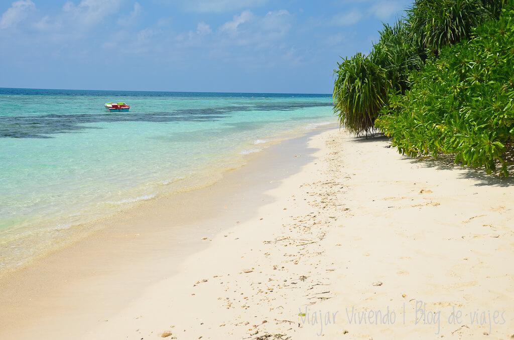 bikini beach rasdu