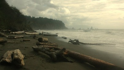Una playa llena de madera en el Parque Nacional Olímpico