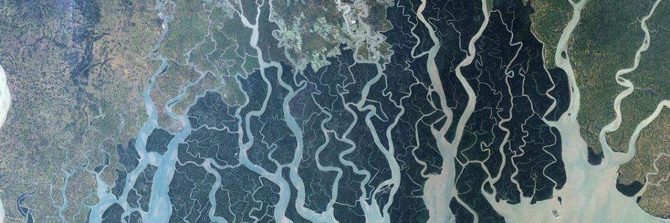 Los Sundarbans