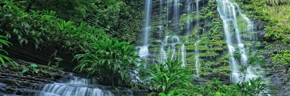 Parque Nacional de los Katíos