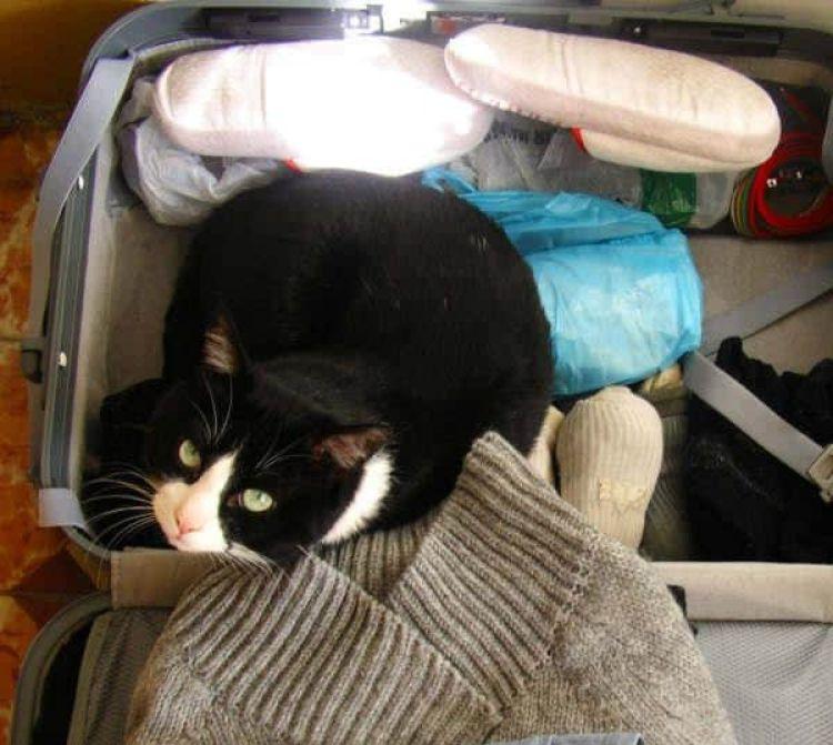 Cómo preparar una maleta