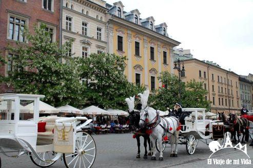 Paseos en calesa por Cracovia