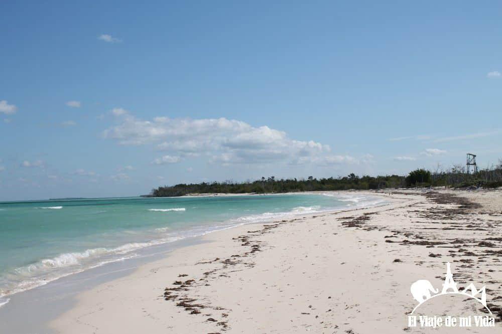 Playa de Cayo Levisa