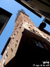 Torre Guinigi en Lucca, en la Toscana