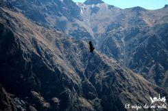Andes en la Cruz del Condor, Perú