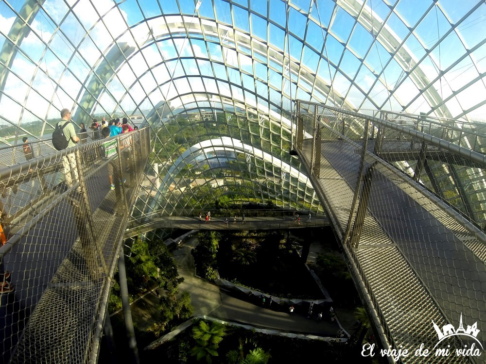 Interior de Gardens by the Bay en Singapur