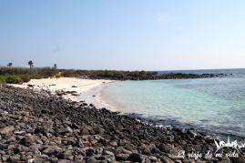 La playa de Santa Fe en Galápagos