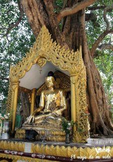 Budas de la pagoda Shwedagon