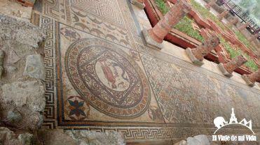 Mosaicos de Conímbriga