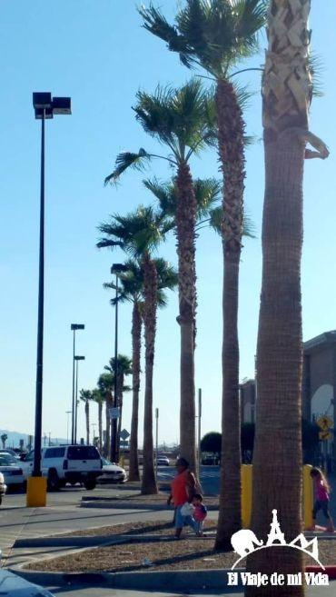 Recorriendo California de Los Ángeles al Gran Cañón