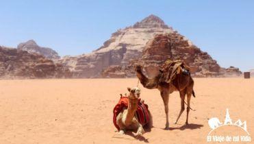 wadi-rum-jordania (6)