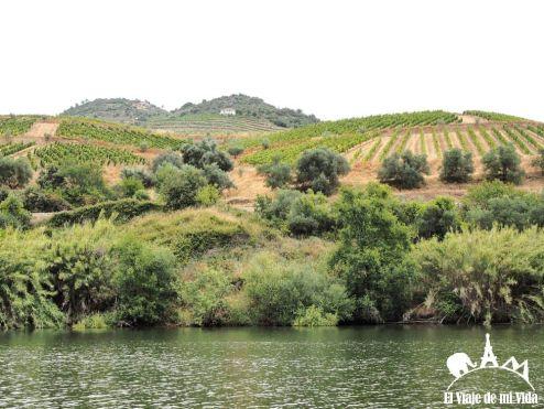 Paisajes de la región del Duero