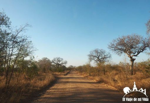 Parque Nacional de Kruger