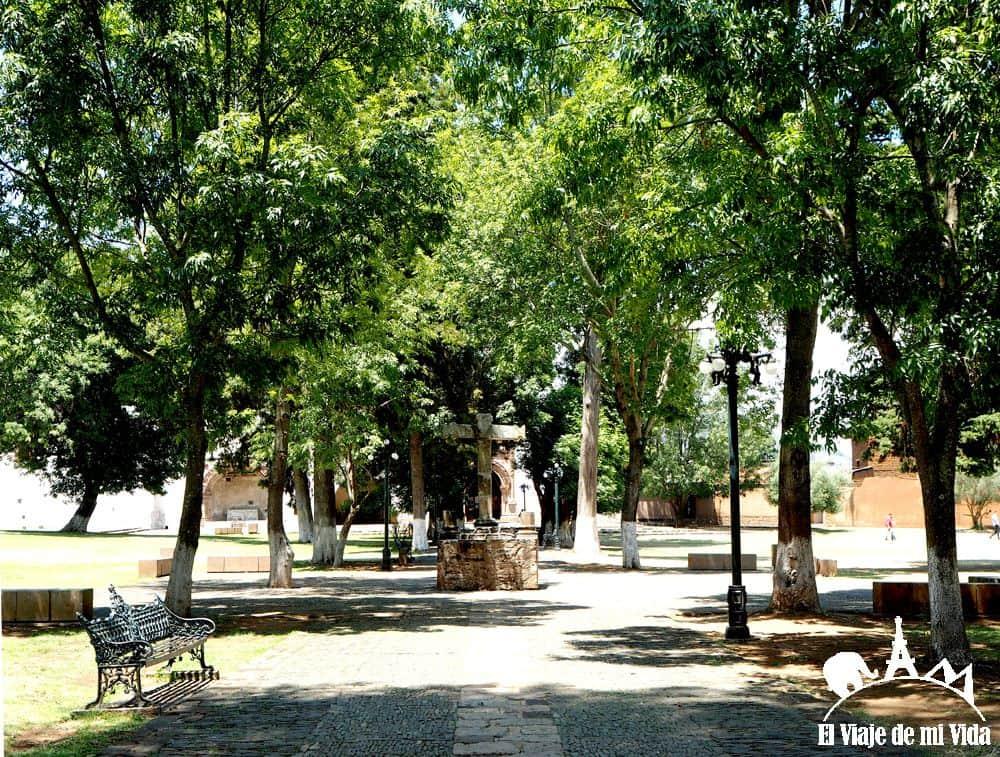 El Jardín atrial de los olivos