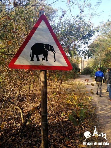 Entrada a Hazyview Elephant Sanctuary