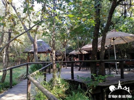 Hazyview Elephant Sanctuary