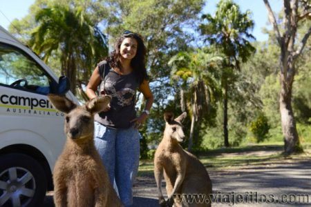 01 Viajefilos en Australia. Morriset 02