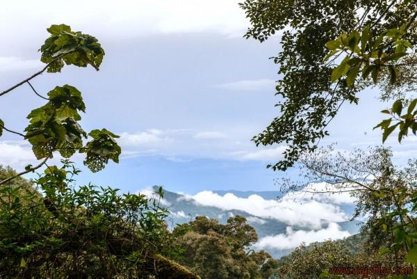 01 Viajfilos en Panama. Sendero Quetzal 02