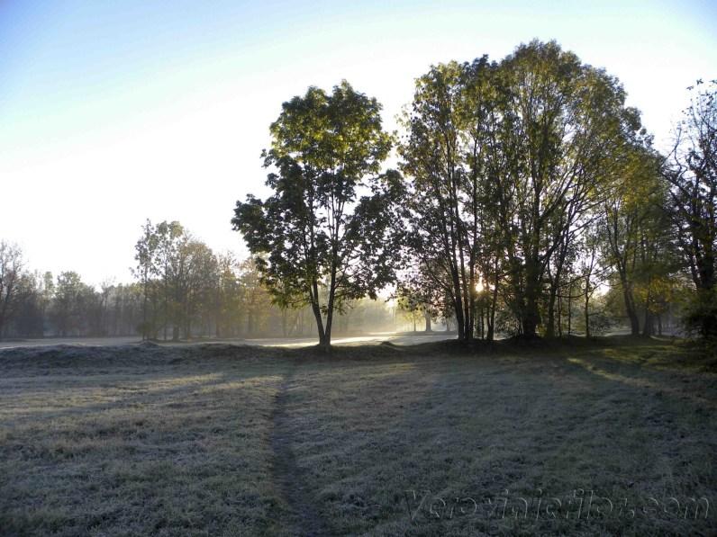 Parque de Zacopane al amanecer