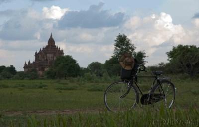 Bagan 40
