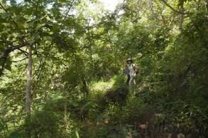 Trekking Kalaw-Inle 31