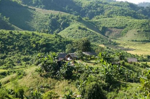 05 Trekking Chiang Rai 27