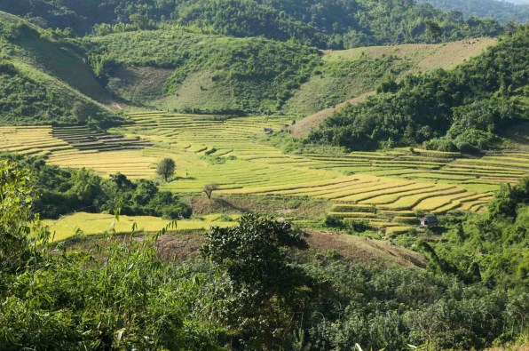 05 Trekking Chiang Rai 28