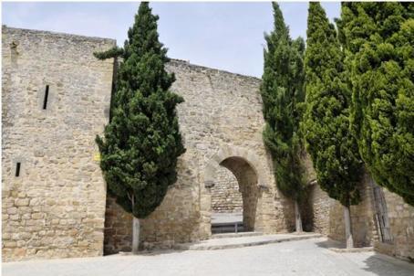 Puerta de Granada 2