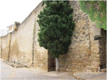 Puerta de Granada 3