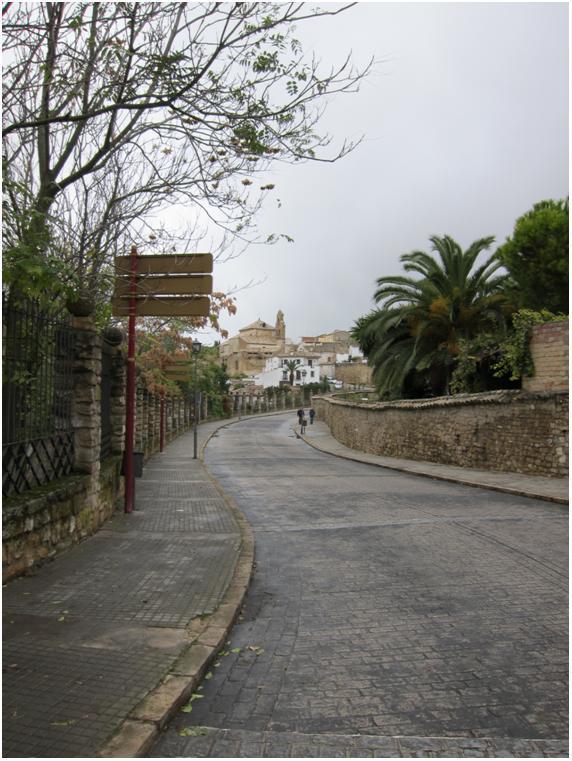 Puerta de Granada 5