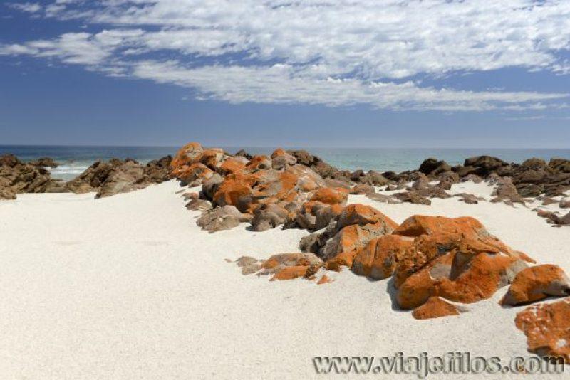 Stokes Bay en el norte de la isla Canguro