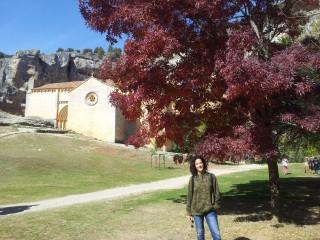 Viajefilos en Segovia 13