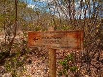 Floresta Petrificada - Missão Velha - Chapada do Araripe - Ceará (3)