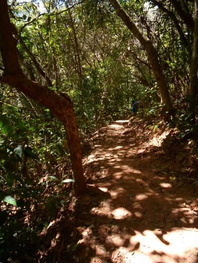Trecho da trilha: nível fácil