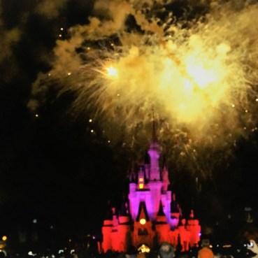 Castelo da Disney de Orlando