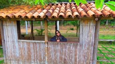Peçanha - Chácara Jambeira (3)