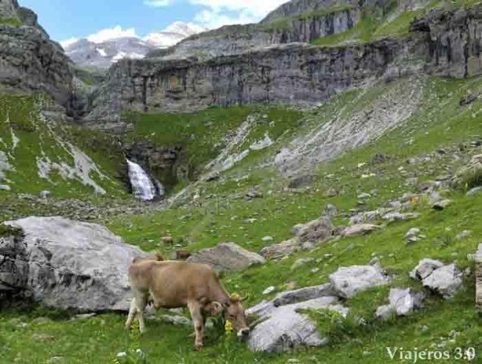 senda-de-los-cazadores-valle-de-ordesa-(11)
