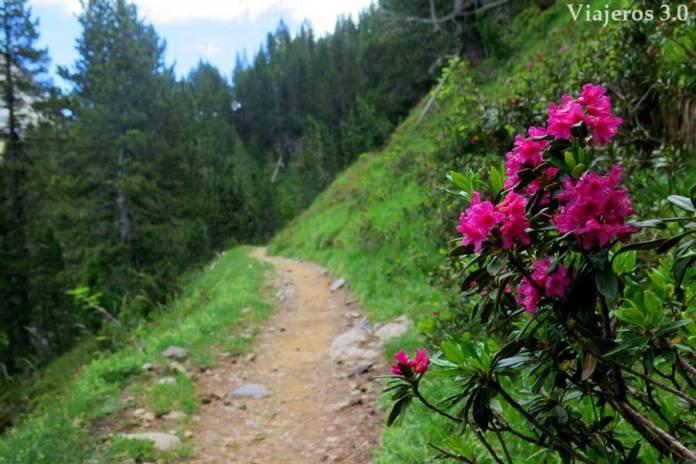 senda-de-los-cazadores-valle-de-ordesa-(4)