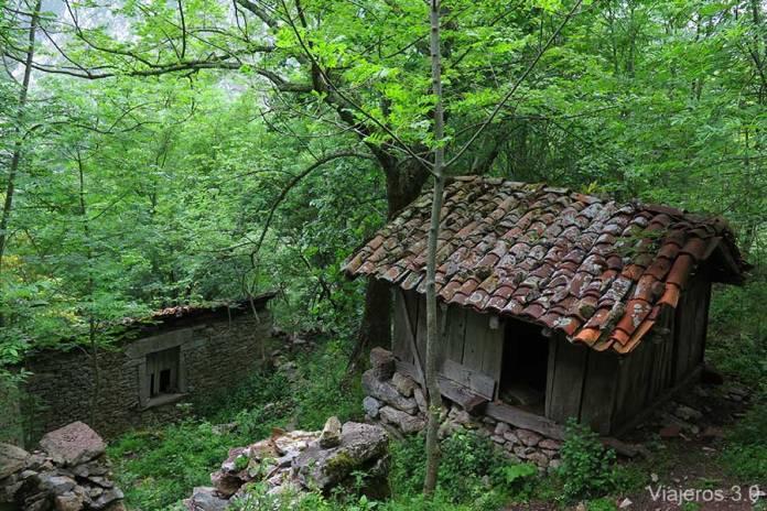 Parque Natural de Ponga, qué hacer y qué ver en Asturias