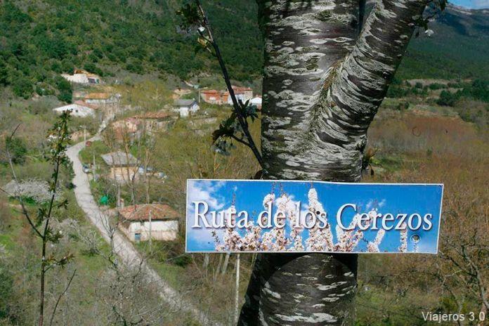 Ruta por el valle de Caderechas, ruta de los cerezos