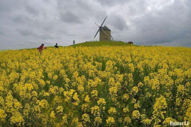 paisajes en ruta por la Bretaña francesa
