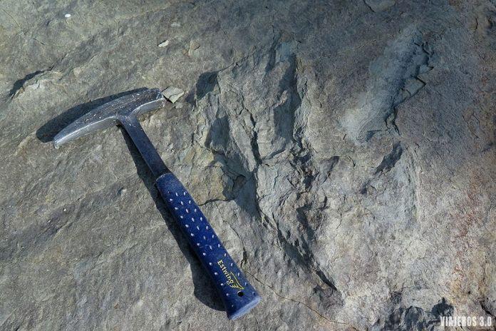 icnitas, ruta de los dinosaurios de La Rioja