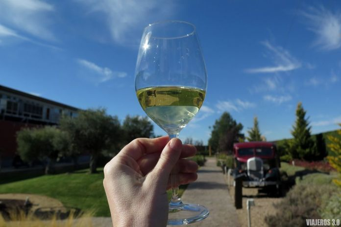 Jardines del Museo del Vino de Pagos del Rey