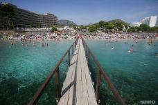 Playa Camp de Mar, las mejores playas de Mallorca