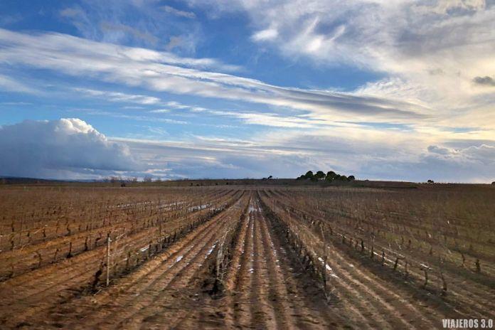 que ver en la Ribera del Duero en Burgos