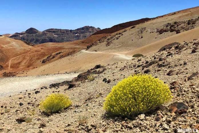 ascenso pico del Teide, ruta a pie
