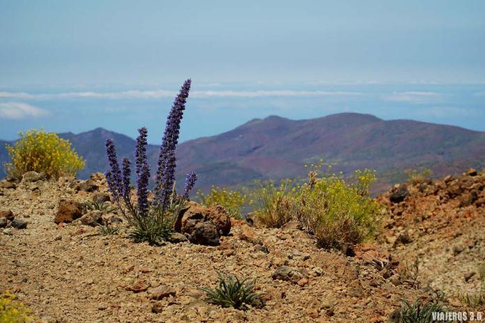 Senderismo, cómo subir al pico del Teide a pie