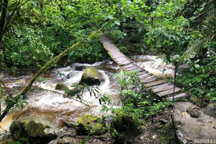 Salento y el Valle de Cocora, ruta de senderismo